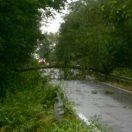 Danni a Monticelli: una tromba d'aria abbatte alberi e pali della linea telefonica