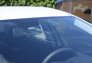 Campi devastati, auto danneggiate: Pontenure conta i danni