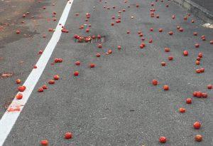 """""""Red carpet"""" in via Due giugno: trasportatore perde carico di pomodori"""