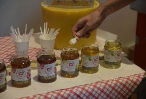 Gli apicoltori piacentini resistono nonostante l'annata disastrosa