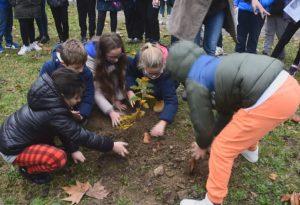 Una quercia nel giardino della scuola: bambini faranno i turni per curarla