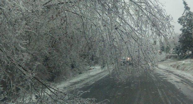 Emergenza maltempo, allerta rossa nel Piacentino. Scuole chiuse, strade bloccate e paesi ancora senza elettricità