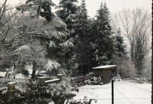 Primo dell'anno con la neve, prossimi giorni all'insegna della variabilità