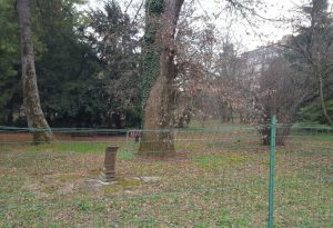 """Polo riabilitativo e """"Parco Lucca"""": studenti disegnano percorso di collegamento per i pazienti"""
