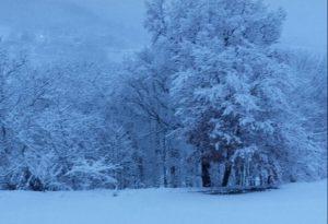 E' tornata la neve: imbiancata la collina. Accumuli fino a 20 centimetri