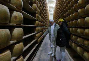 Borgonovo, rubate forme di formaggio, a Ziano case visitate dai ladri