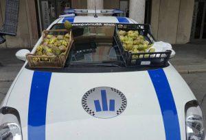 Controlli sul mercato: sequestrati 100 carciofi a venditore abusivo