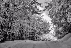 Temperature estreme, neve e gelicidio: 36 ore di allerta meteo nel nostro territorio