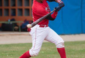 Piacenza Baseball, il campionato inizia il 14 aprile ad Avigliana