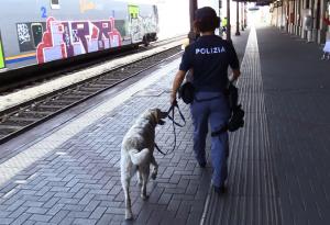 """Scatta l'operazione """"Stazioni sicure"""": controlli a tappeto sui viaggiatori"""