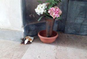 Degrado senza fine: escrementi umani accanto ad una tomba