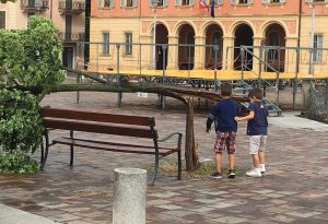 Pioggia, vento e grandine: maltempo colpisce la Val Luretta, alberi abbattuti ad Agazzano