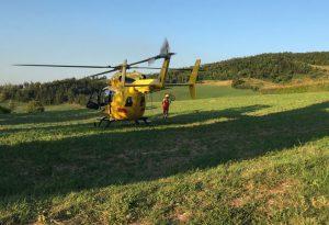 Cade da un albero mentre taglia legna, grave un 73enne trasportato a Parma