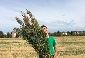 Studio sulla quinoa: studente piacentino vince medaglia negli Stati Uniti