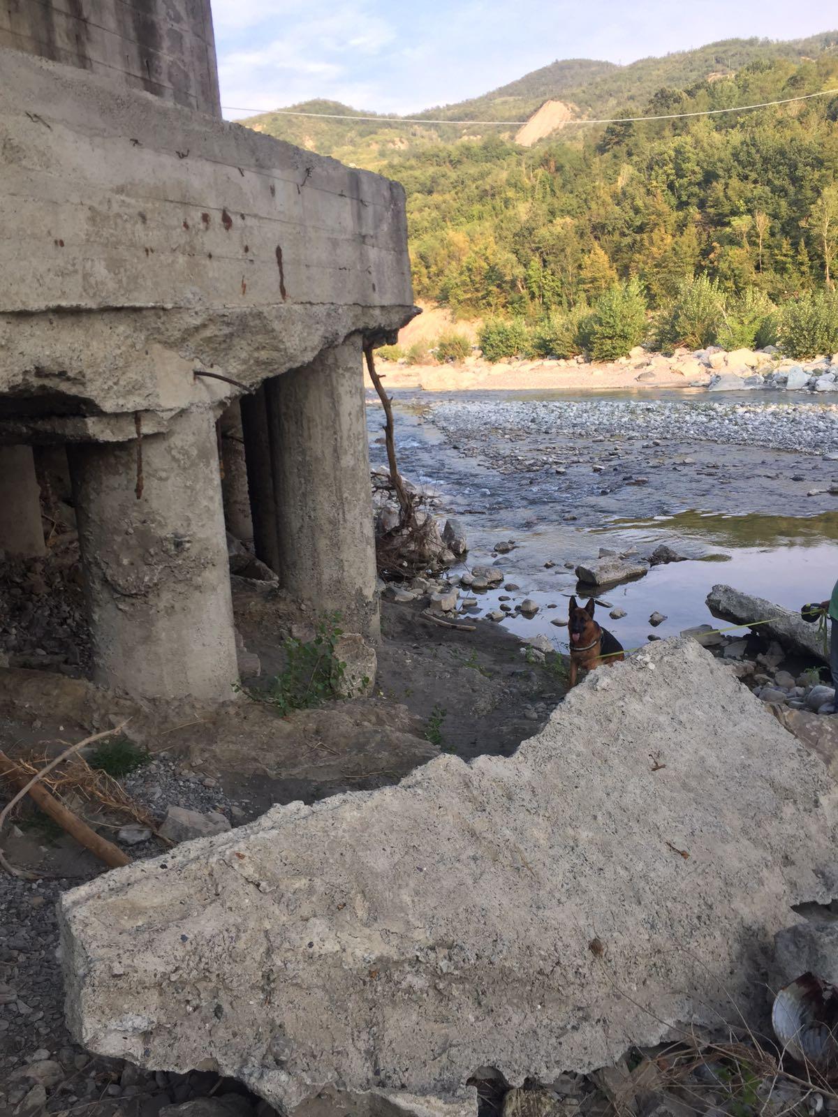 Ponti e strade in pericolo: Provincia segnala 50 interventi per 29 milioni di euro nel territorio piacentino