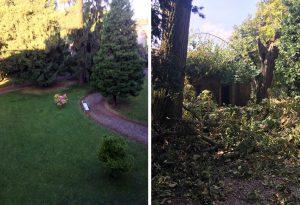Il giardino del castello devastato dalla furia della tempesta. Com'era