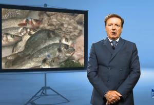 """""""Sicurezza alimentare"""", grigliare il pesce senza dimenticare la salute"""