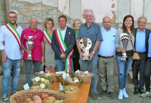 Successo a Mareto per la festa della patata. In mostra anche le carote giganti