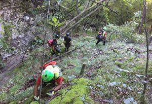 Tragedia in alta Valtrebbia: fungaiolo cade nel bosco e muore