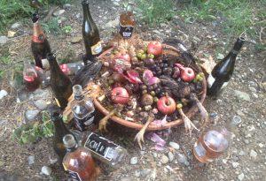Riti voodoo con animali uccisi e alcolici: macabro ritrovamento