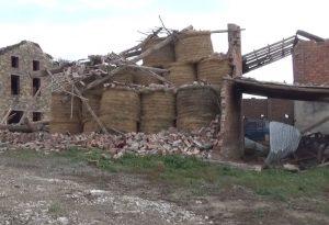 Bufera nel Piacentino, Coldiretti stima danni per 4 milioni di euro