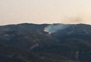 Maxi incendio di Rovere, le fiamme si arrestano. Cinque ore di lavoro dei pompieri