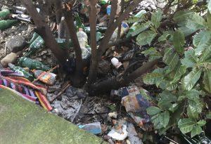 Muri scrostati e degrado: la difficile convivenza nelle case popolari