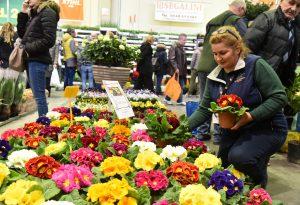 Miele, fiori, spezie e salumi: tre eventi in uno a Piacenza Expo