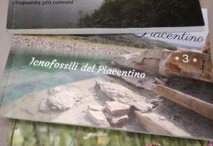 Prezioso fossile trovato a Travo: le curiosità del nostro territorio