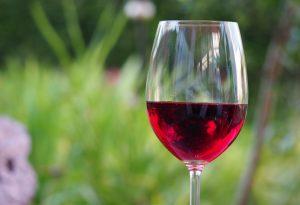Cresce il vino biologico: Piacenza seconda in regione