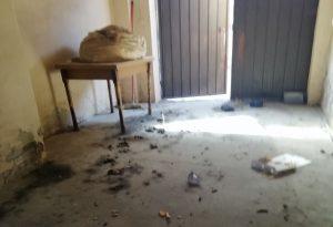 Da regalo a problema: liberato cane rinchiuso da mesi in un garage