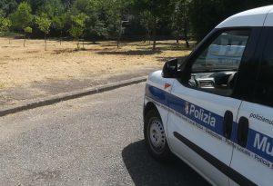 Sfalcio aree senza pace: polizia locale scopre smaltimento irregolare del verde