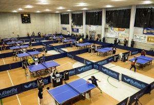 All'Open Nazionale, Cortemaggiore domina con Dernini, Colombi e Ulivo