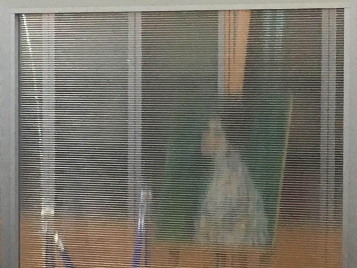 Klimt: il
